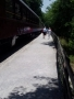 Great Smoky Mtn RR Excursion.